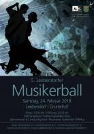 5.Musikerball